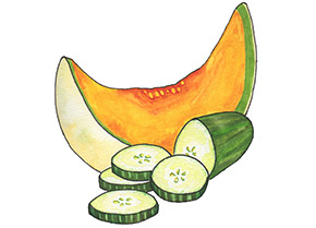 Piping Rock Cucumber Melon Fragrance Oil